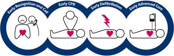 How to deal with CPR in an emergency image